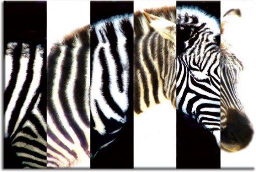 ozdoby zwierzęta