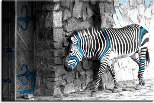 obrazy zwierzęta