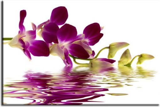 obrazy kwiaty