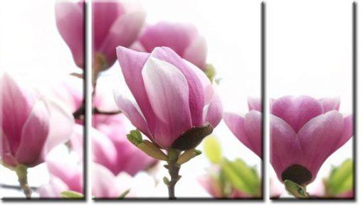 obraz tryptyk magnolia