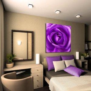 obraz fioletowa róża