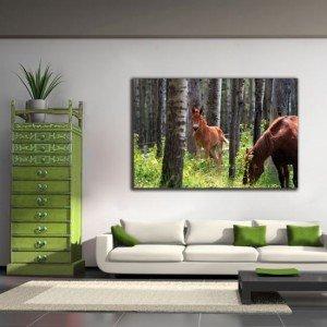 Konie na obrazach