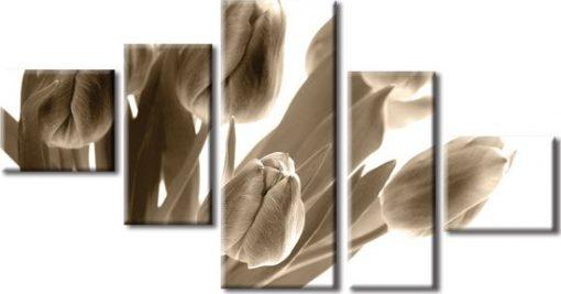 kaskady z tulipanami
