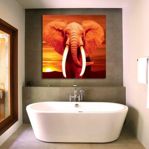 obrazy z słoniem