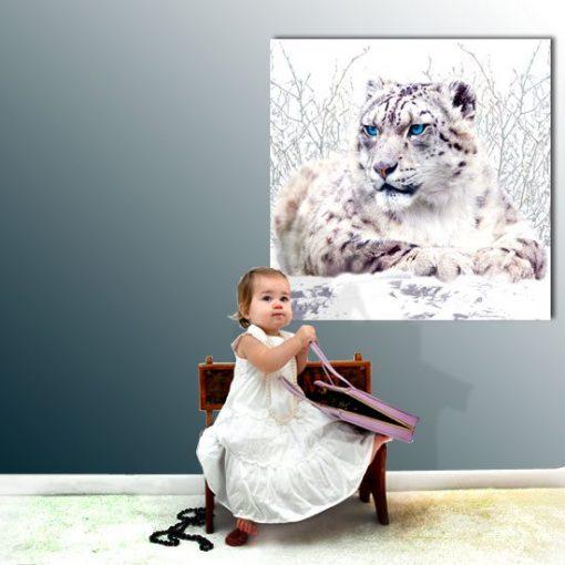 obrazy z zwierzętami