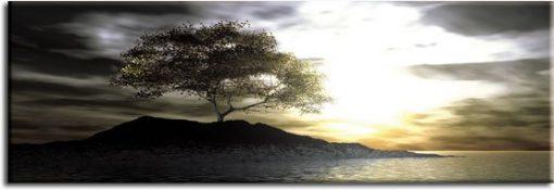 obraz z drzewem i skałą