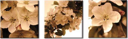 tryptyk z kwiatami