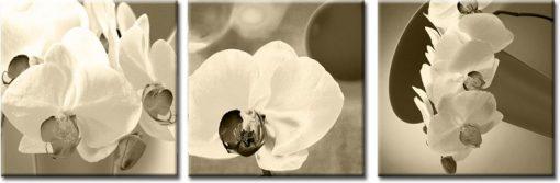tryptyki z kwiatami