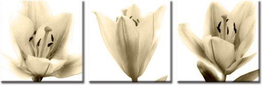 tryptyk z liliami