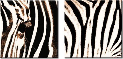 obrazy z zwierzętmi