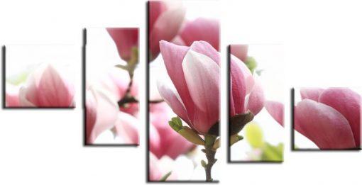 kaskada z magnolią