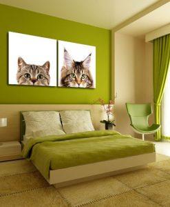 dekoracje obraz koty