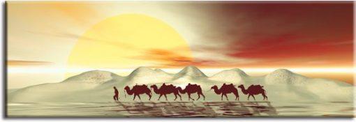 obrazy z wielbłądami