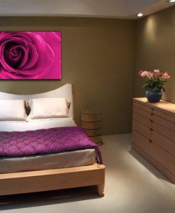 obrazy różowe