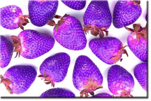 obrazy z truskawkami