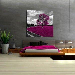 obraz amarantowe drzewo
