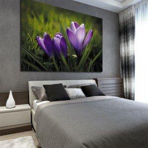 obraz dekoracyjny krokusy