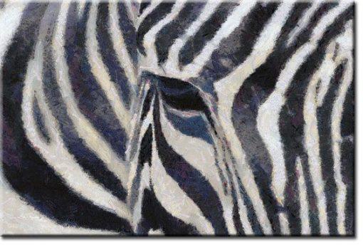 obrazy z zebrą