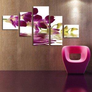 kaskada orchidea