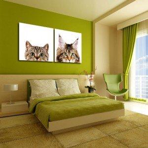 dyptyk dwa koty