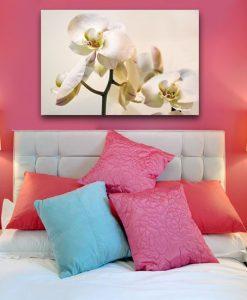 dekoracje z orchideą