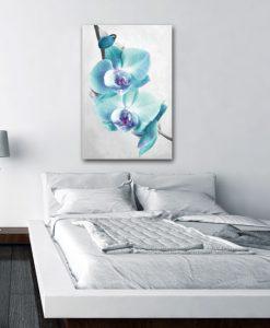 obrazy z orchideą