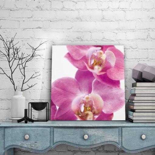 kwiaty na obrazach