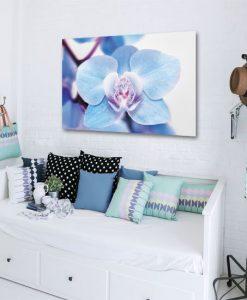 niebieskie kwiaty na obrazie