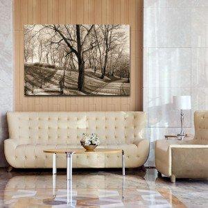 Obrazy na ścianę las - ozdoby z parkiem