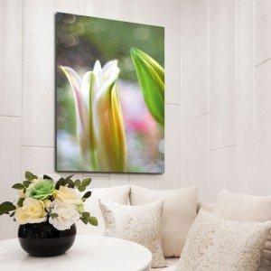 obrazy z liliami