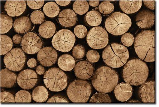 obrazy z drewnem
