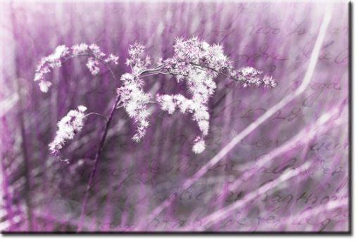 obrazy w fiolecie
