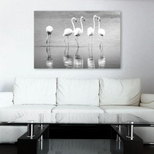 obrazy z flamingami