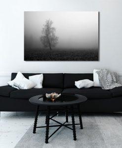 obraz z drzewem i mgłą