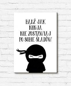 Obraz z napisem o ninja