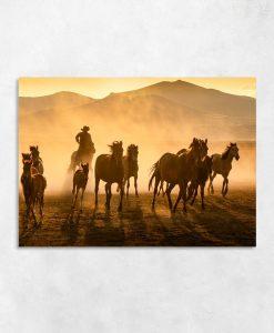 Obraz stado koni i kowboj