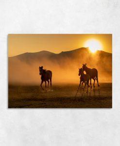Brązowy obraz konie