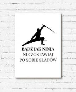 Obraz napis ninja