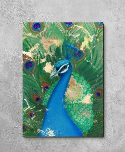 obraz pawie pióra