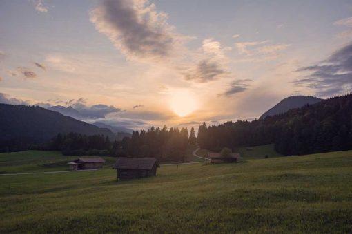 Obraz - Krajobraz łąki