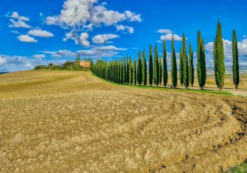Obraz pejzaż Toskanii