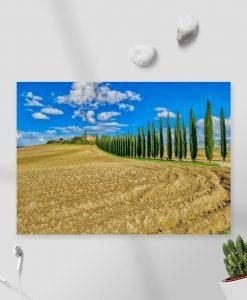 Obraz aleja cyprysów