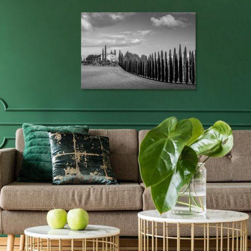Obraz z cyprysową drogą w szarej barwie