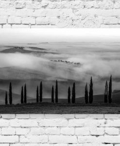 Obraz z czarno-białym krajobrazem do sypialni