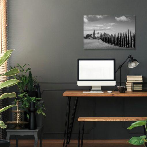 Obraz szpaler drzew prowadzący do domu