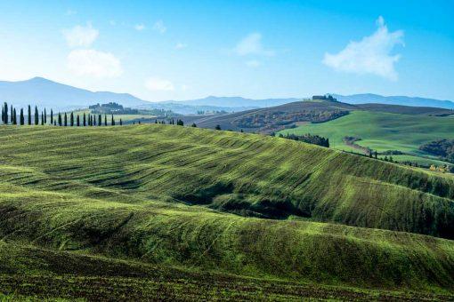 Zielone łąki - Obraz z pejzażem