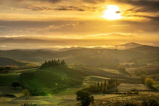 Obraz w złotej tonacji z zachodem słońca