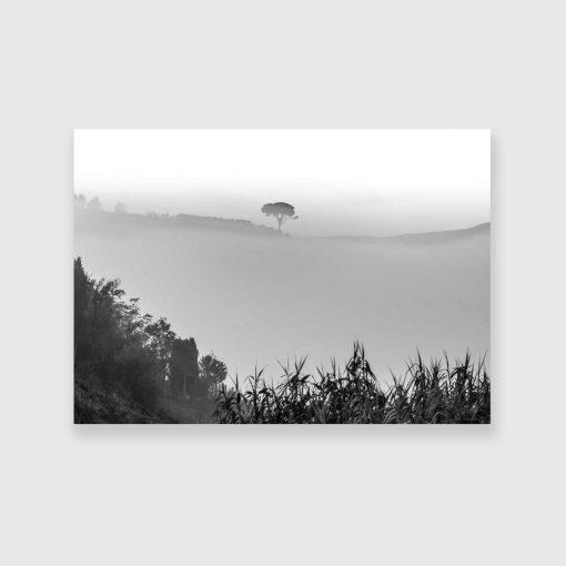 Obraz z drzewem w kolorach czarno-białych