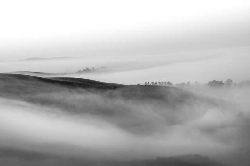 Obraz mgła nad polami o poranku