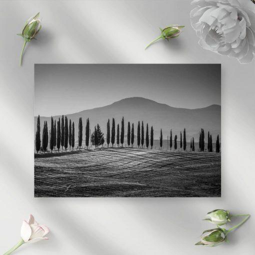 Szary obraz z motywem gór i drzew do nowoczesnych wnętrz